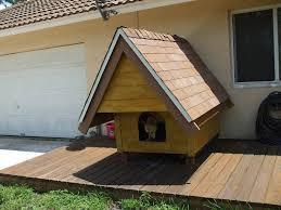 A custom dog house in South Florida