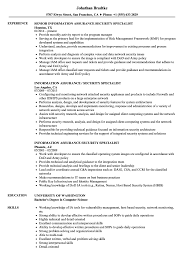 Security Specialist Resume Example Information Assurance Security Specialist Resume Samples Computer 2