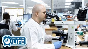 A Day In The Life Of A Medical Laboratory Technician