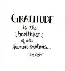 Grateful Quotes Delectable Gratitude Quotes Quotes