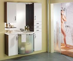 cabinet designs for bathrooms. Bathroom Cabinet Ideas Design Glamorous Stunning Small Best News Designs For Bathrooms