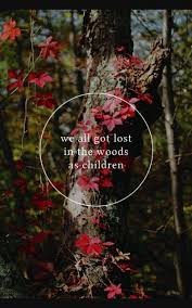Lost Woods Quotes Pinterest Wood Inspiration And Me Quotes Classy Woods Quotes