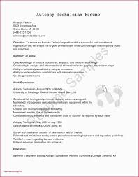 Simple Resume Format Doc Free Resume Template Doc Simple Resume