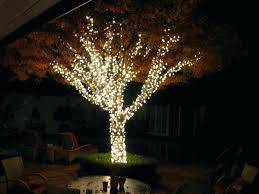 palm tree lights outdoor innovative string solar patio
