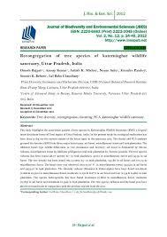 essay topics environment problem and solution