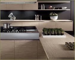 Frameless Kitchen Cabinet Manufacturers Italian Kitchen Cabinets Manufacturers Home Design Ideas