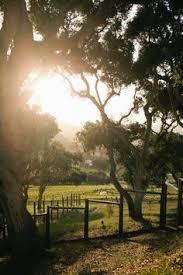 country garden inn carmel. Carmel Valley Ranch Country Garden Inn