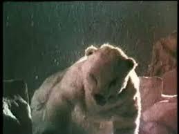 santa claus conquers the martians polar bear. Delighful Polar The  Intended Santa Claus Conquers Martians Polar Bear O