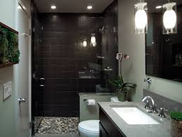shower stall lighting. Organic And Light Filled Bathroom. Small_cadmium02 · Small_cadmium01 Small_cadmium07 Small_cadmium08 Shower Stall Lighting H