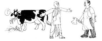 Image result for Cow Protection CARTOON