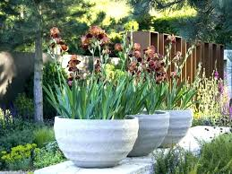 large outdoor urns pair extra