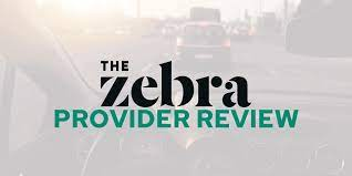 The zebra auto insurance rate comparison site pulls rates from over 100 companies in the u.s. The Zebra Insurance Review How Does The Zebra Work Savology