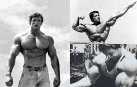Arnold Gym Workout Chart Arnold Schwarzenegger Training Diet And Motivation Of The