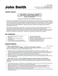 Executive Format Resume Classy Vp Resume Examples Quesosdepaipaco