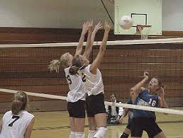 write about something that s important history of volleyball essay custom volleyball essay writing supremeessays com