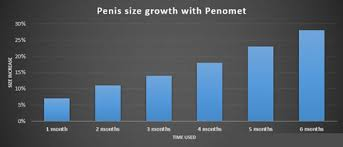 Penomet Size Chart Penomet Review Effective Penis Pumping Routine And Results