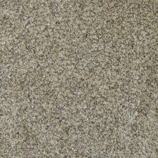 home decorators collection carpet sample all the best ii color