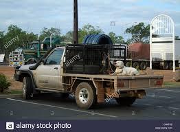Pickup Truck Parking Lot Stock Photos & Pickup Truck Parking Lot ...