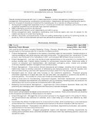 It Project Manager Resume Doc Best Resume Templates