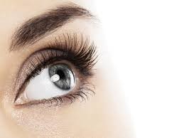 super foods for beautiful eyes superfoods