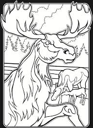 Welcome To Dover Publications In The Wild Stained Glass Coloring