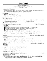 Production Support Engineer Resume Sales Support Lewesmr
