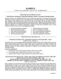 It Sales Resume Sample Resume It Sales Resume Examples 2