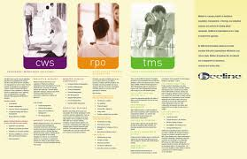 beeline brochure by lorena suri issuu