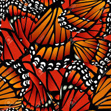 Butterfly Pattern Adorable Seamless Monarch Butterfly Pattern Wings On White Royalty Free