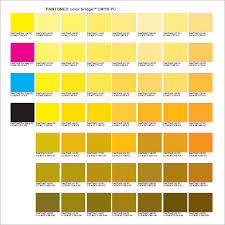 Pantone Coated Color Chart Pdf Free 6 Sample Pantone Color Charts In Pdf Word
