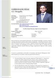 Student Resumes Examples International Business Student Resume Resume Format  For Uk Jobs International Curriculum Vitae Resume