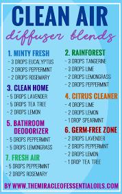 essential oil diffuser blends for clean air