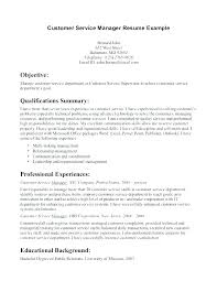 Resume Career Summary Examples Sample Career Summary City Co Resume