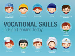 evaluate sociological perspectives on vocational education  vocationalskills