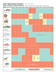 Florida Saltwater Fishing Regulations Chart Florida