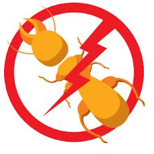 Image result for pest control