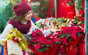 Celebrate National Poinsettia Day with Eastern Floral - Eastern ...