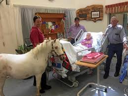 No horsing around for 106-year-old Hilda | Queensland Times