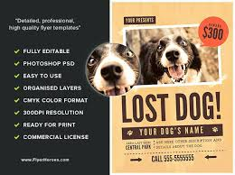 how to make lost dog flyers lost pet flyers missing cat dog poster template archive flyer free