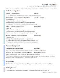Career Example Objective Resume Statement Sample Resume For