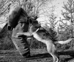 Собаки специального назначения Рассекреченные методики подготовки  Собаки специального назначения Рассекреченные методики подготовки охранных собак fb2 КулЛиб Классная библиотека Скачать книги бесплатно