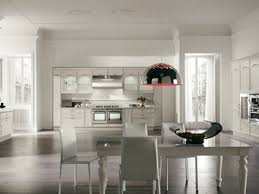 Avenue linear kitchen by aster cucine