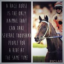 Racing Quotes 49 Wonderful Quotes About Race Horses 24 Quotes