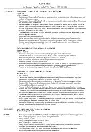 Extended Resume Template Commercial Lines Account Manager Resume Samples Velvet Jobs
