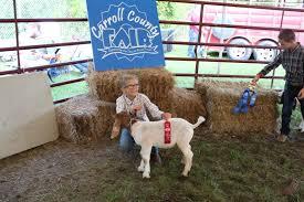 Livestock Shows - Carroll County VA Agricultural Fair