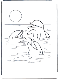 Tre Delfini Animali Acquatici