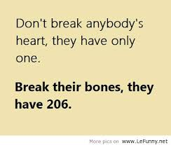 Joke Quotes Magnificent Break Their Bones They Have 48 Funny Joke