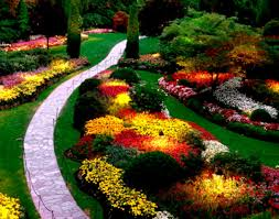 Small Picture Flower Bed Ideas For Full Sun Pictures Beautiful Black And White