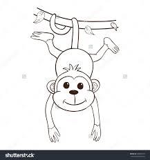 cute monkey outline cartoon monkey stock photos images