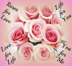Roses For Love Life For You Free Roses Ecards Greeting